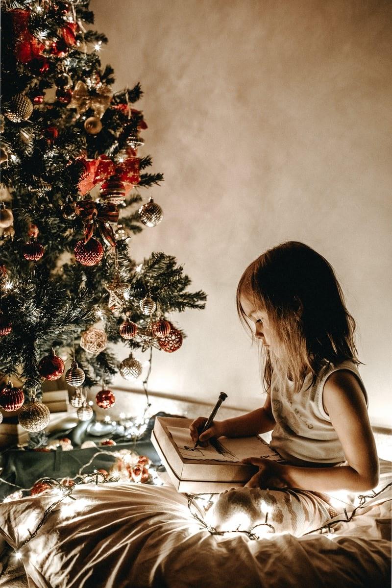 Christmas-tree-shop-1