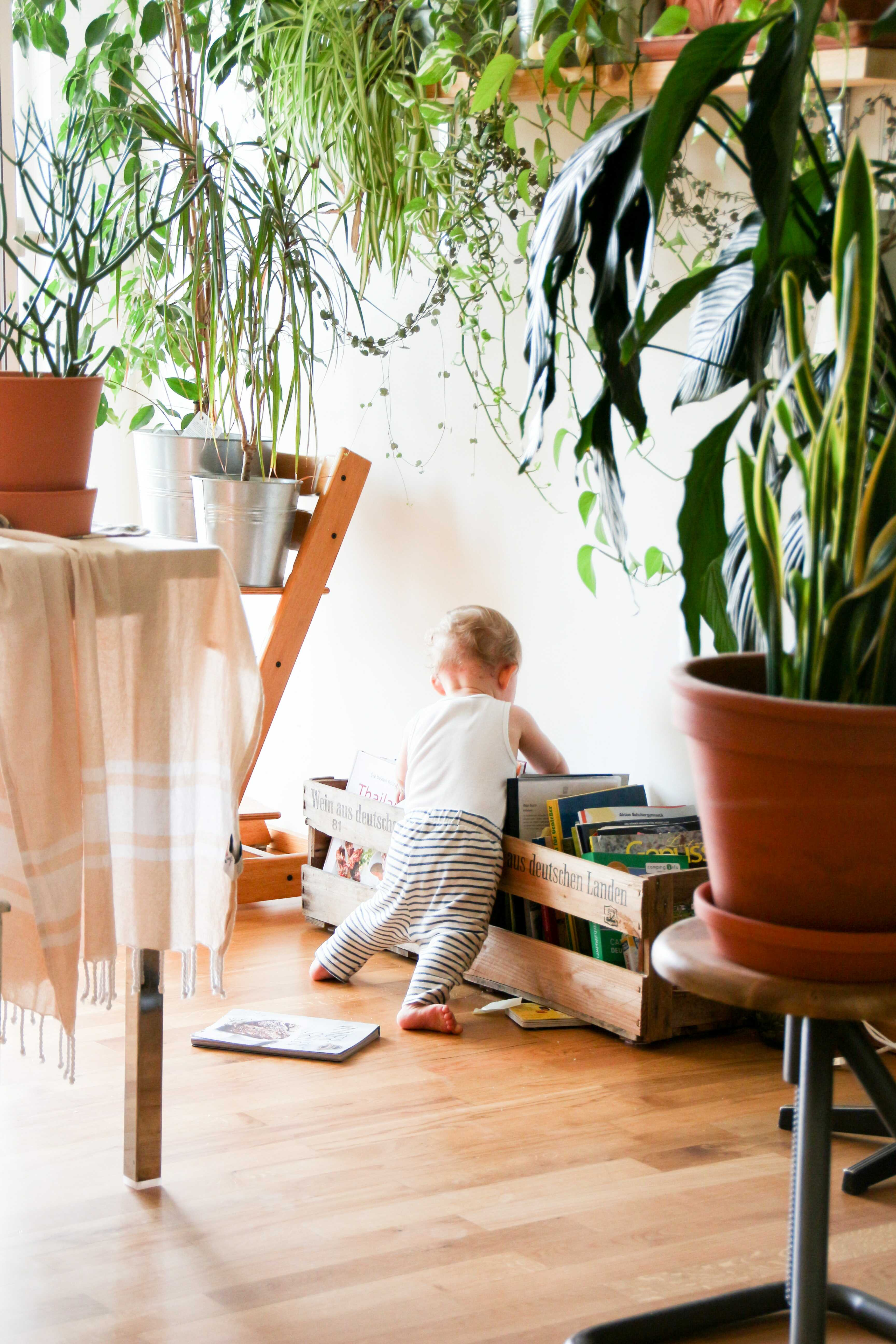 a baby with books
