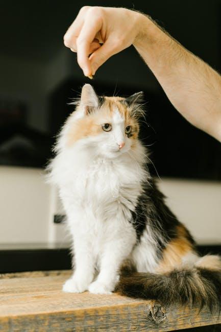ASPCA pet insurance coverage