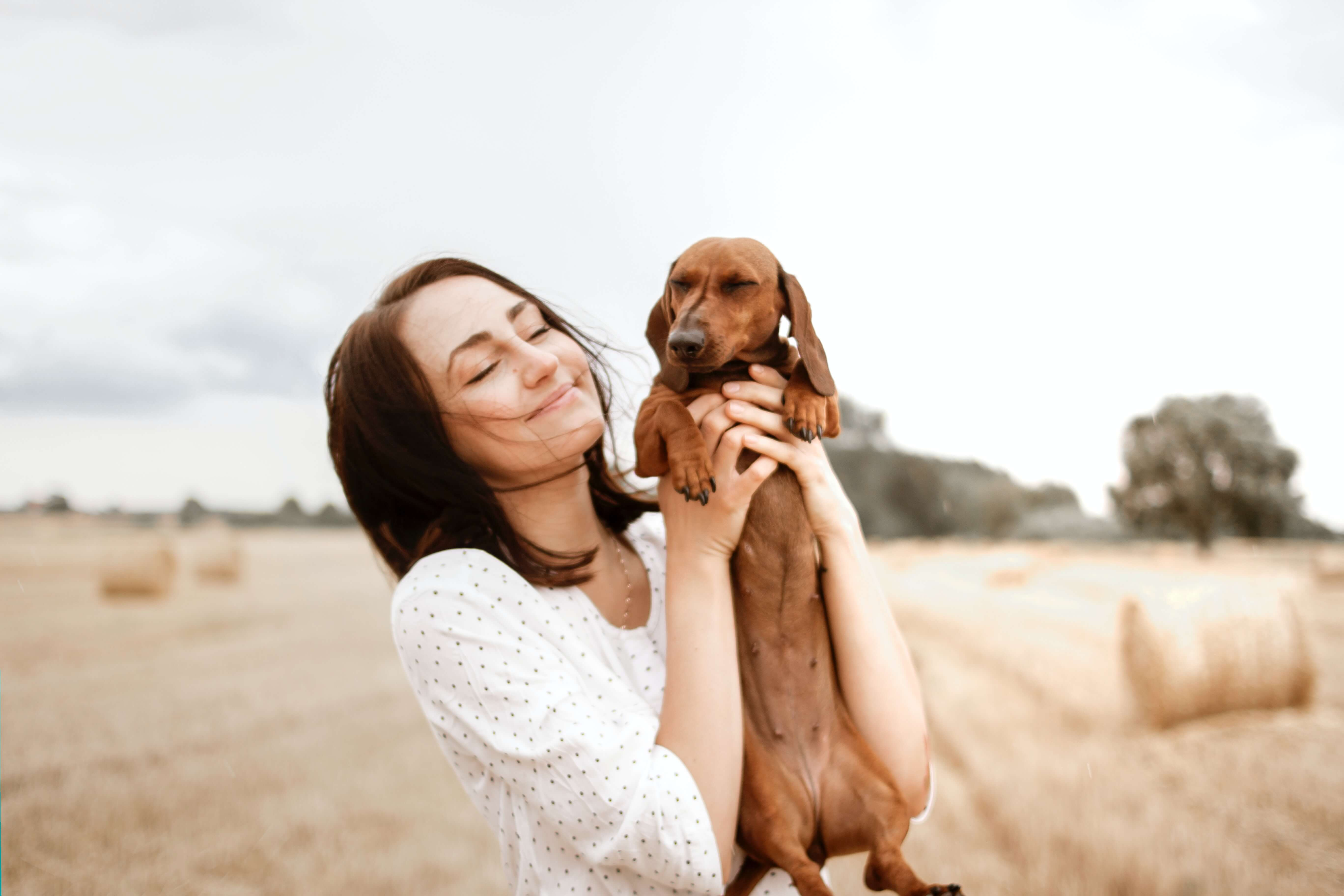 USAA Pet Insurance | How To Take Care from Your Pet Simply Via USAA