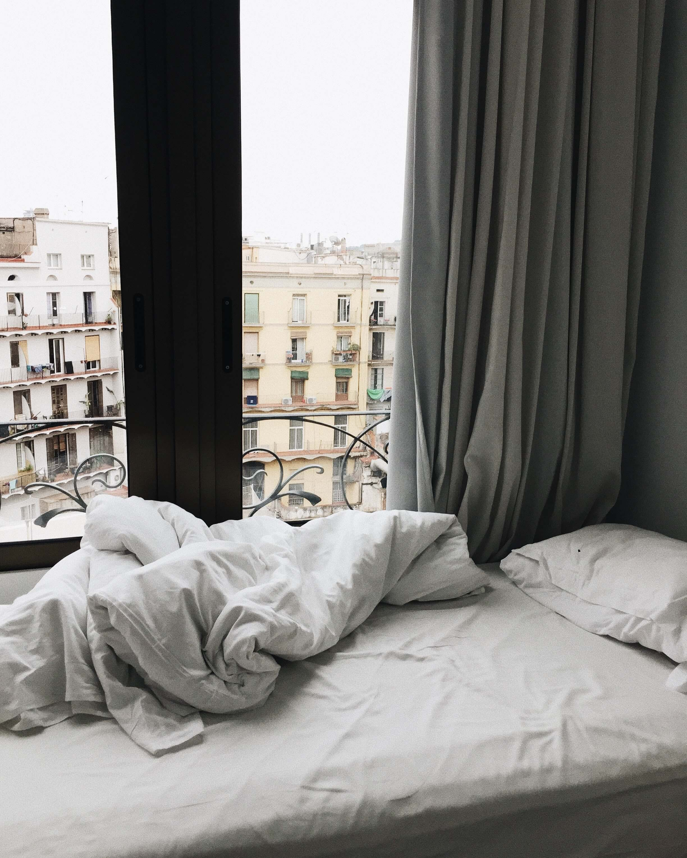 natural bed bug treatment